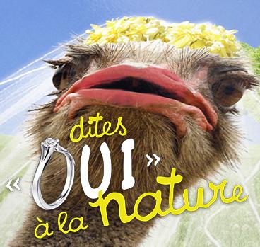 vignette oui a la nature